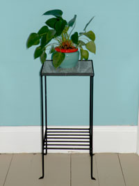 Granite and Black Iron Plant Stand